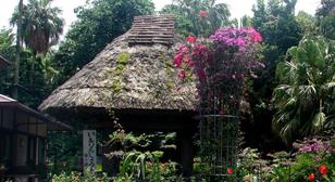 奄美風庭園