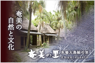 Nature and culture of Amami