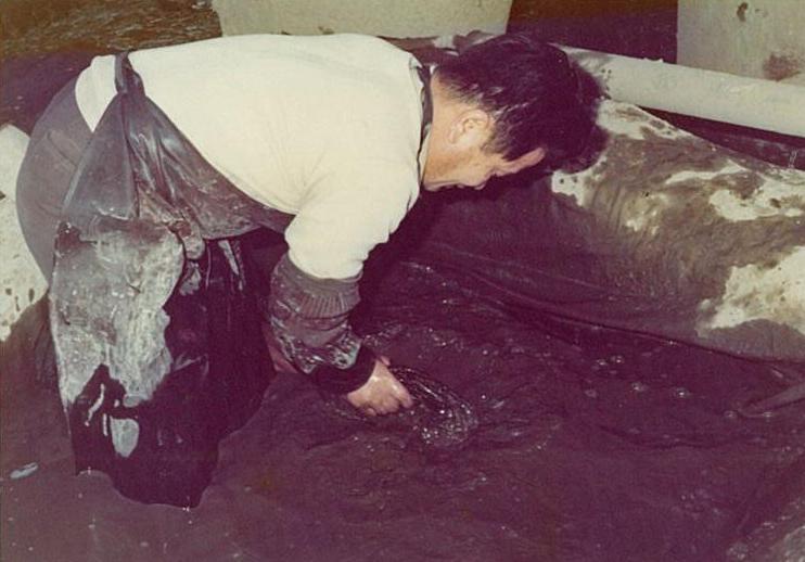 泥染めをする人